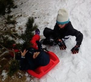 esplai nieve2015_01